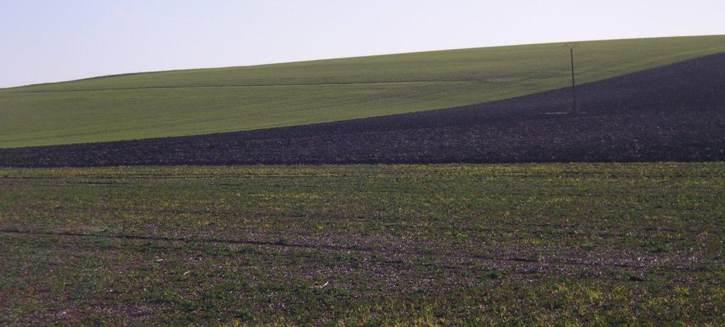 Lancement de l'AMI « Développer les pratiques et des filières basées sur l'agroécologie pour sortir des pesticides »