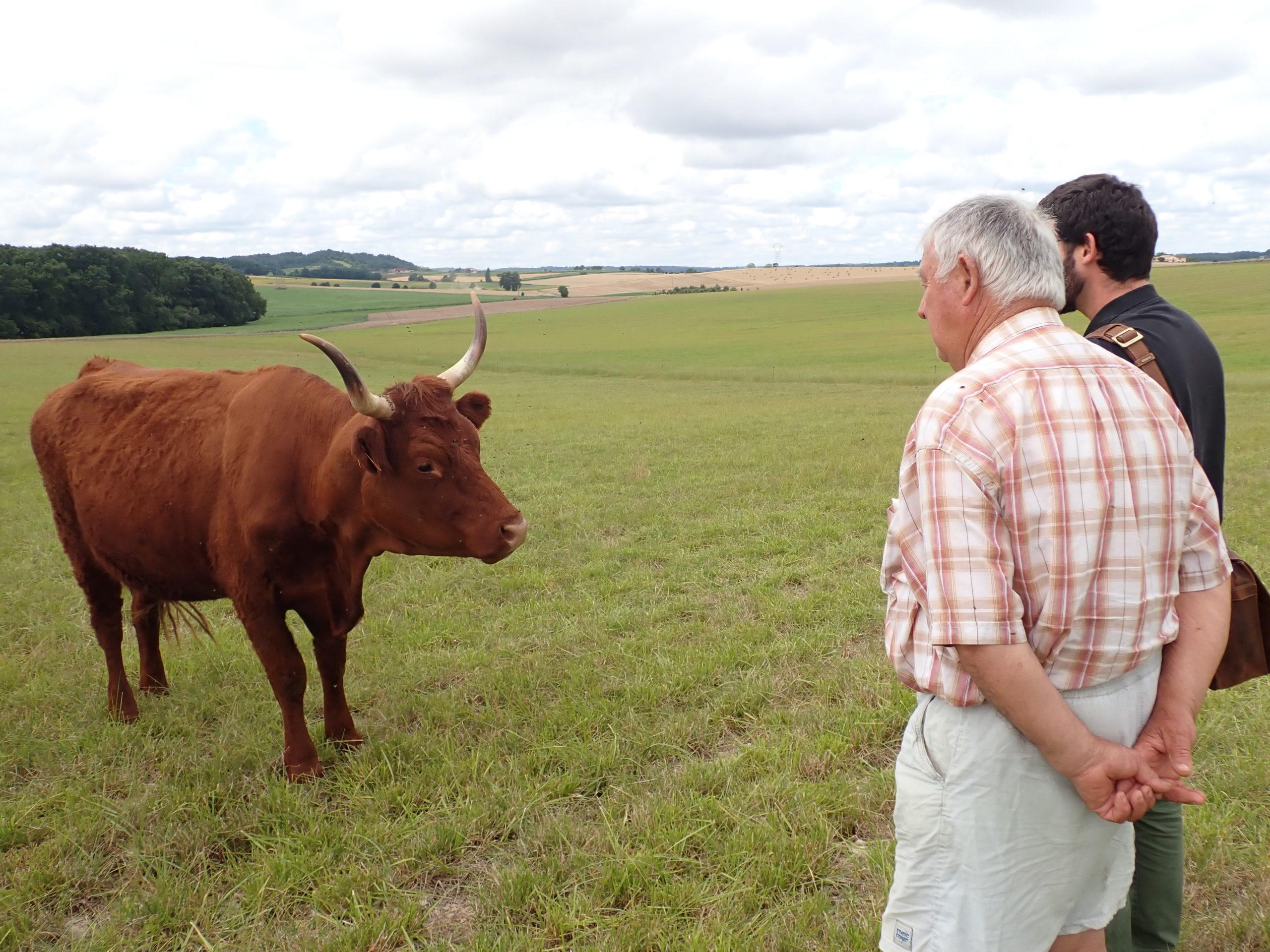 Offre emploi : Charente eaux recrute un(e) technicien(ne) agro-environnement – dept. 16